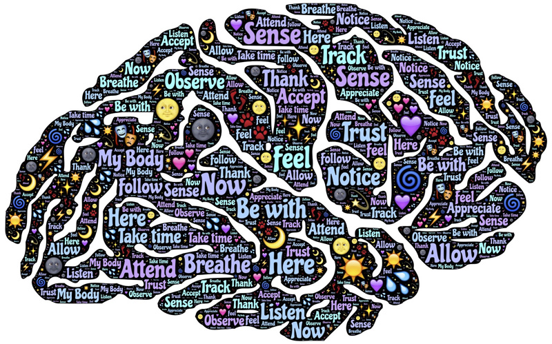 Gehirnbenutzer